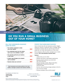 home business insurance photographer consumer brochure