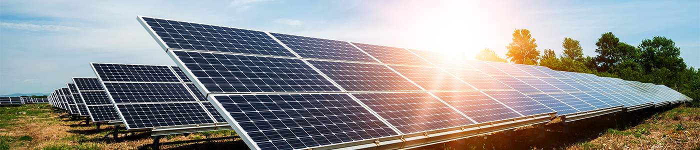 Banner Image of Solar Field